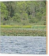 Water Landscape Wood Print