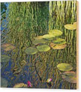 Water Lilies Reflection Wood Print