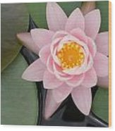 Water Lily Centered Wood Print