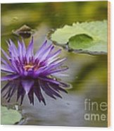 Water Lily Kissing The Water Wood Print