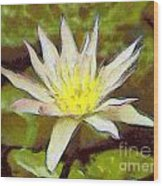 Water Lily Wood Print by Odon Czintos