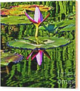 Water Lily Pond Garden Impressionistic Monet Style Wood Print