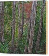 Water Park Wood Print