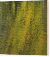Water Reflection Abstract Autumn 1 A Wood Print
