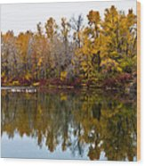 Water Reflection Wood Print