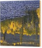 Water Reflections With A Rocky Shoreline Wood Print
