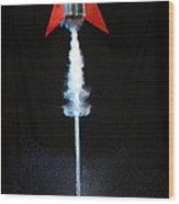 Water Rocket Wood Print