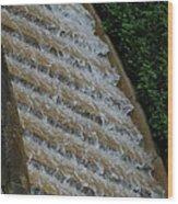 Water Steps 1 Wood Print