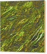 Water.4428 Wood Print