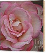 Watercolor Petals Wood Print