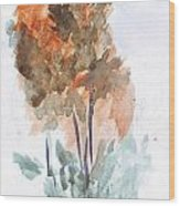 Watercolor Sketch Wood Print