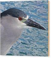 Watercolored Black-crowned Night-heron Wood Print