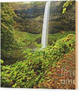 Waterfall Along The Trail Wood Print