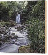 Waterfall In A Forest, Glenoe Wood Print