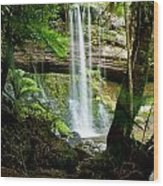 Waterfall In Deep Forest Wood Print