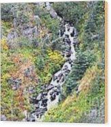 Waterfall In Skagway Wood Print
