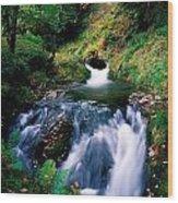 Waterfall In The Woods, Ireland Wood Print