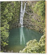 Waterfall Reflections Wood Print