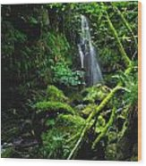 Waterfall, Sloughan Glen, Co Tyrone Wood Print