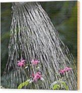 Watering Can Wood Print
