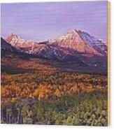 Waterton Lakes National Park, Alberta Wood Print