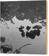 Watery Reflections Wood Print