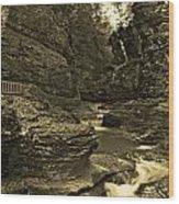 Watkins Glen In Orotone Wood Print