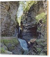 Watkins Glen Spring One Wood Print
