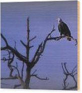 Watson Lake Bald Eagle Wood Print