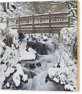 Waukeena Creek, Columbia River Gorge Wood Print