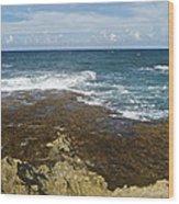 Waves Breaking On Shore 7930 Wood Print