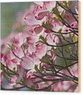 Waves Of Pink Light Wood Print