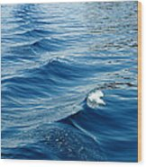 Waves On Tahoe Wood Print