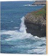 Waves On The Coast Wood Print