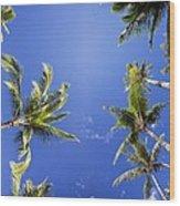 Waving Palm Trees Wood Print