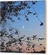 Waxing Crescent Moon Wood Print
