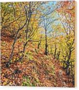 Way To The Chapel Wood Print