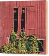 Weathered Broken Red Barn Window Of New Jersey Wood Print