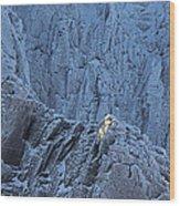Weathered Granite Wood Print