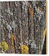 Weathered Post Wood Print