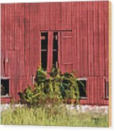 Weathered Red Barn Of New Jersey Wood Print