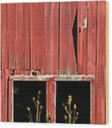 Weathered Red Barn Windows Of New Jersey Wood Print