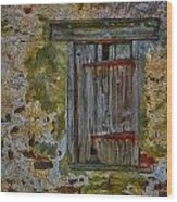Weathered Vibrancy Wood Print