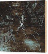 Web Glitter Wood Print