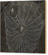 Web Master Wood Print