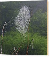 Web Over Foggy Lake Wood Print