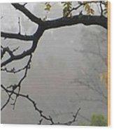 Wednesday Mist Wood Print