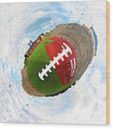 Wee Football Wood Print by Nikki Marie Smith