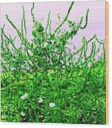 Weird Weeds Wood Print