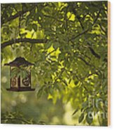 Welcome Feather Friends Wood Print